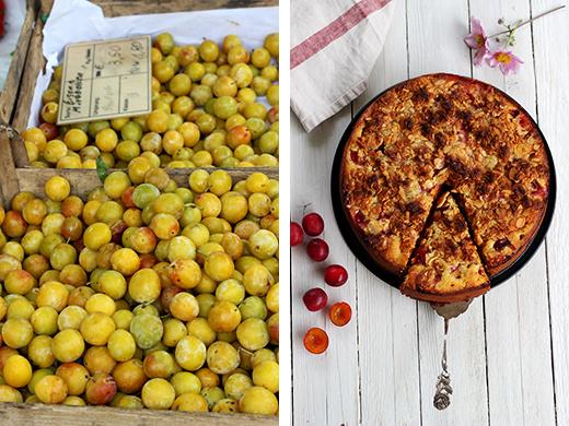 Mirabellenkuchen mit Streuseln. Sommerkuchen mit Rührteig, Mirabellen Rezept. Holunderweg18