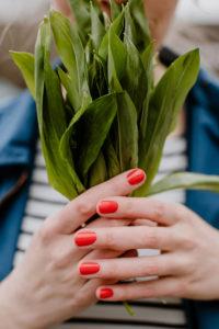 Bärlauch Rezepte, Rezepte mit Bärlauch, Bärlauch verarbeiten, HOlunderweg18 foodblog