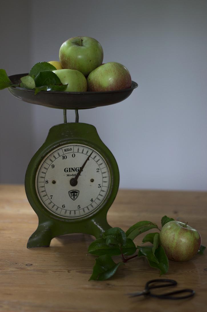 Schwedischer Apfelkuchen vom Blech: Rezept für Apfel-Blechkuchen. Holunderweg18